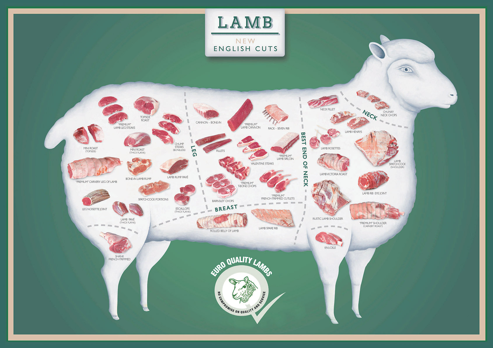 Informative lamb graphic detailing vast selection of lamb cuts available and which part of the animal each is taken from