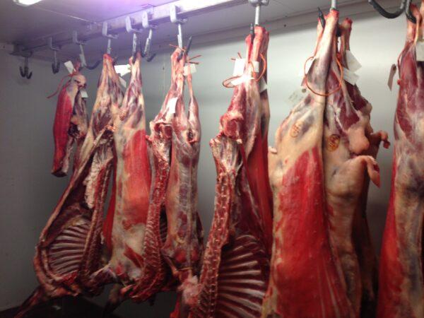 Whole goat box Euro Quality Lambs