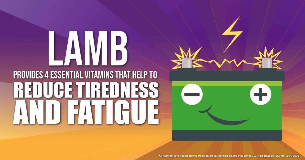 Health Lamb reduces Fatigue